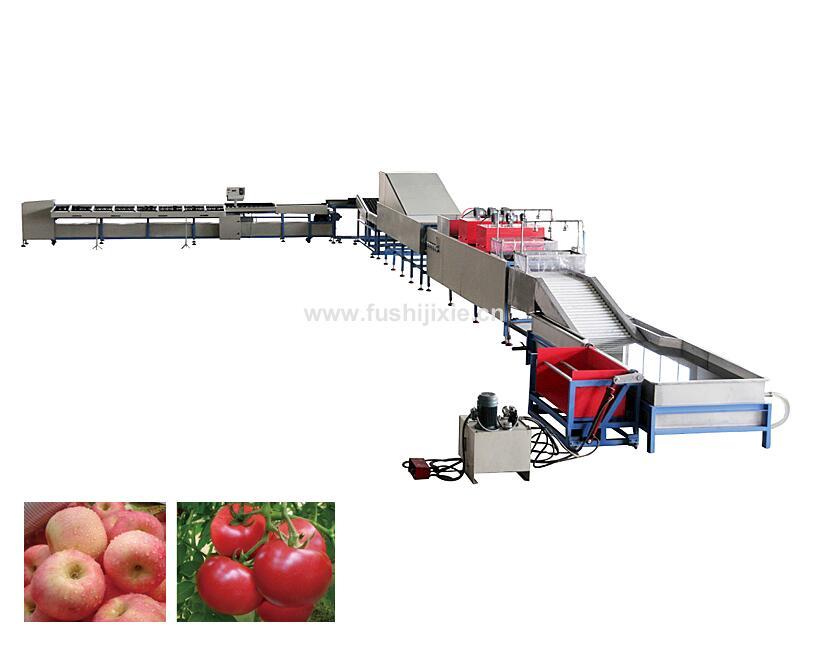 水果清洗打蜡机器
